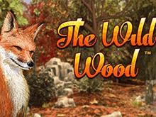 Аппарат на деньги The Wild Wood